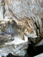 haystack_driftwood